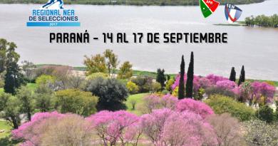 regional-nea-sub16-damas-parana_orig